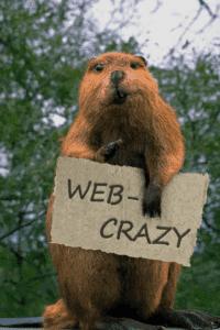 Создание корпаративных сайтов